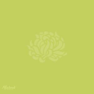 Whimsy Hydrangea